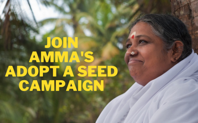 Amma's Adopt a Seed Campaign